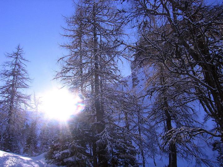 Foto: Andreas Koller / Ski Tour / Über den Leobner (2036m) / 25.01.2009 23:48:40