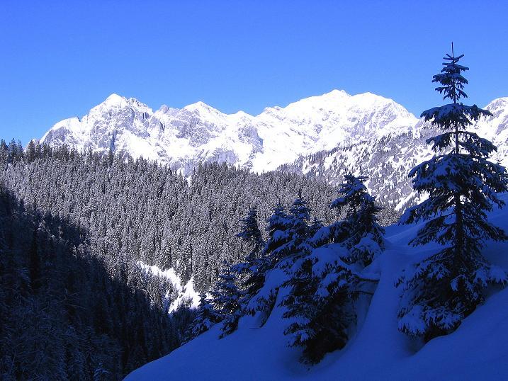 Foto: Andreas Koller / Ski Tour / Über den Leobner (2036m) / 25.01.2009 23:48:30