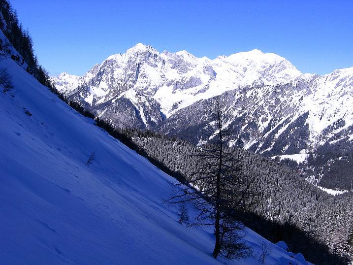 Foto: Andreas Koller / Ski Tour / Über den Leobner (2036m) / Ödstein (2335 m) und Hochtor (2369 m) / 25.01.2009 23:48:04