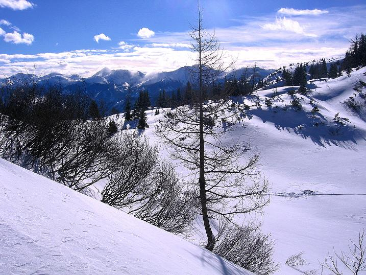 Foto: Andreas Koller / Ski Tour / Über den Leobner (2036m) / Blick vom Leobner Törl nach S / 25.01.2009 23:44:31