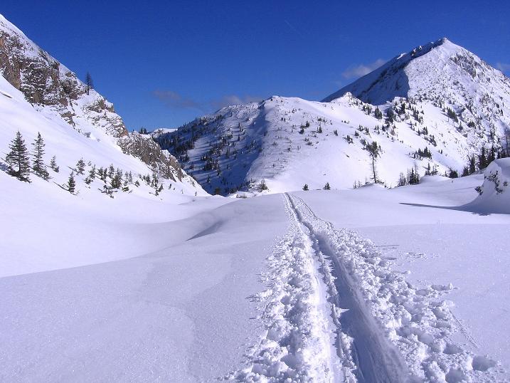 Foto: Andreas Koller / Ski Tour / Über den Leobner (2036m) / Die Spur vom Leobner Törl ins Kar / 25.01.2009 23:42:38