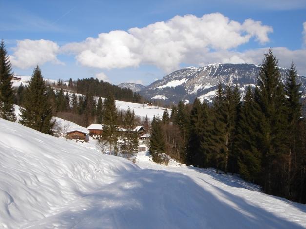 Foto: Manfred Karl / Ski Tour / Vom Gasthof Winkelmoos auf den Karstein / Ausgangspunkt Gasthof Winkelmoos / 26.01.2009 20:33:28