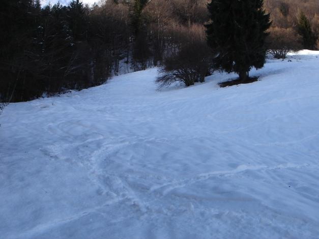 Foto: Manfred Karl / Ski Tour / Vom Gasthof Winkelmoos auf den Karstein / Links oben im Wiesenspitz beginnt der schmale Waldweg / 26.01.2009 20:32:31