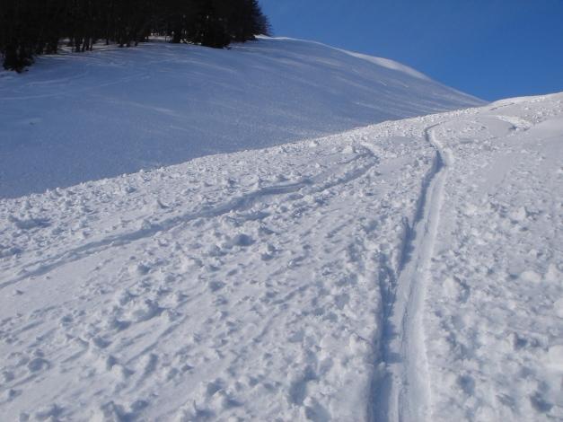 Foto: Manfred Karl / Ski Tour / Vom Gasthof Winkelmoos auf den Karstein / 26.01.2009 20:30:27