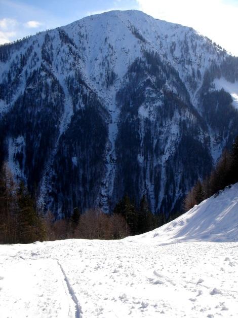 Foto: Manfred Karl / Ski Tour / Vom Gasthof Winkelmoos auf den Karstein / Platte / 26.01.2009 20:29:47