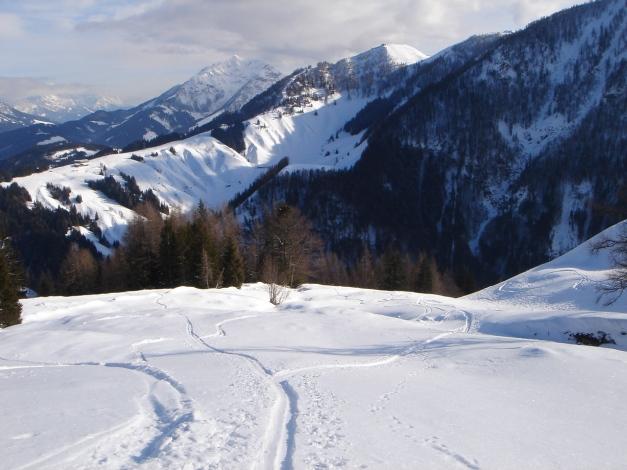 Foto: Manfred Karl / Ski Tour / Vom Gasthof Winkelmoos auf den Karstein / Schöne Schihänge unterhalb der Edenhausenalm / 26.01.2009 20:29:02