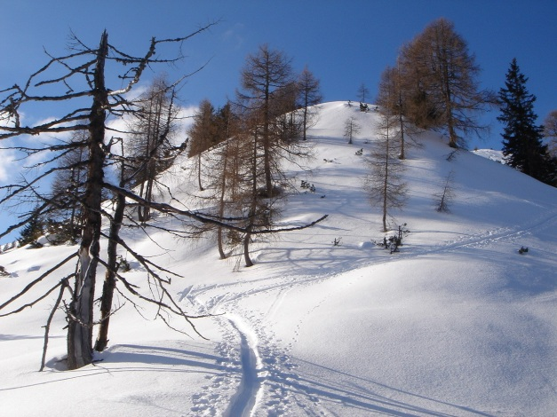 Foto: Manfred Karl / Ski Tour / Vom Gasthof Winkelmoos auf den Karstein / 26.01.2009 20:26:51