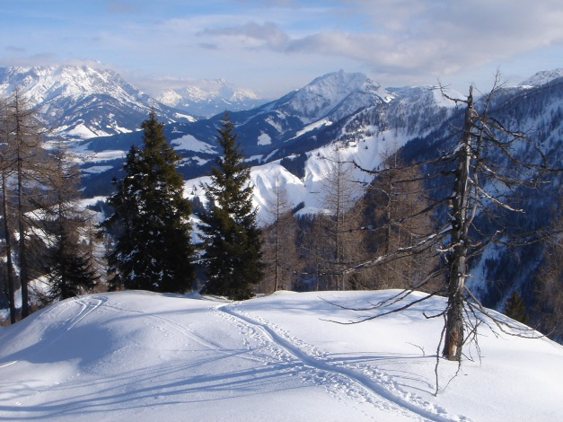 Foto: Manfred Karl / Ski Tour / Vom Gasthof Winkelmoos auf den Karstein / 26.01.2009 20:26:38