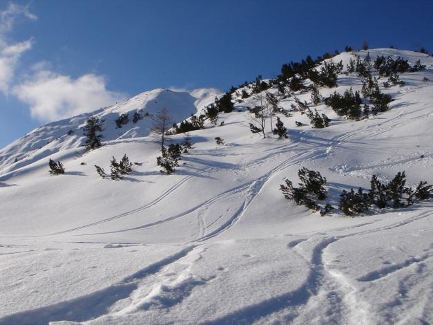 Foto: Manfred Karl / Ski Tour / Vom Gasthof Winkelmoos auf den Karstein / Der weitere Anstieg wird sichtbar / 26.01.2009 20:26:19