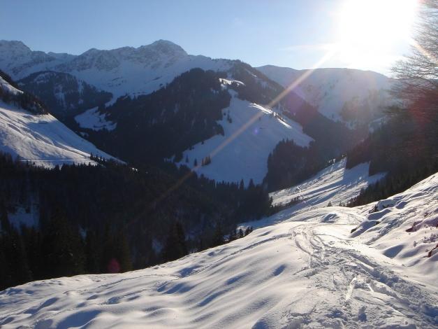 Foto: Manfred Karl / Ski Tour / Vom Gasthof Winkelmoos auf den Karstein / Abfahrt auf Höhe der Huschenalm / 26.01.2009 20:12:50