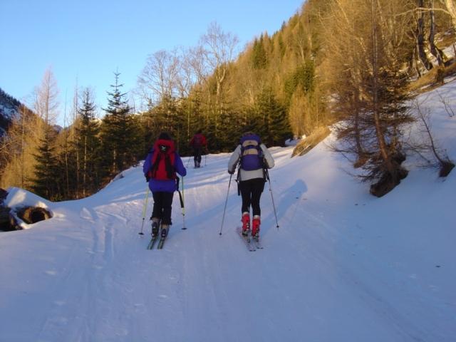 Foto: Manfred Karl / Ski Tour / Schöpfing (2143m) / 26.01.2009 21:38:09