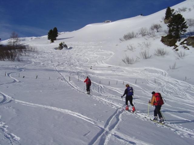Foto: Manfred Karl / Ski Tour / Schöpfing (2143m) / 26.01.2009 21:06:14