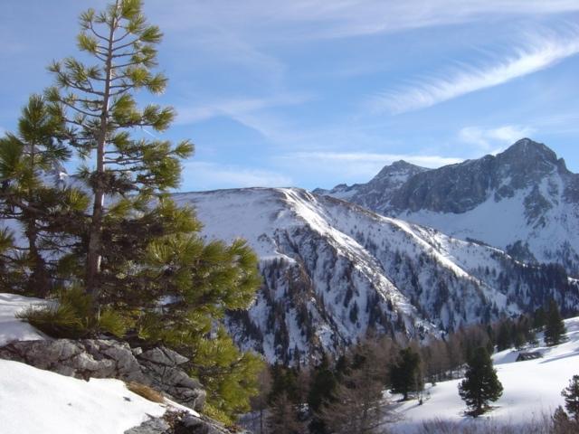 Foto: Manfred Karl / Ski Tour / Schöpfing (2143m) / Aignerhöhe - Zwillingswand - Guglspitze / 26.01.2009 21:05:41