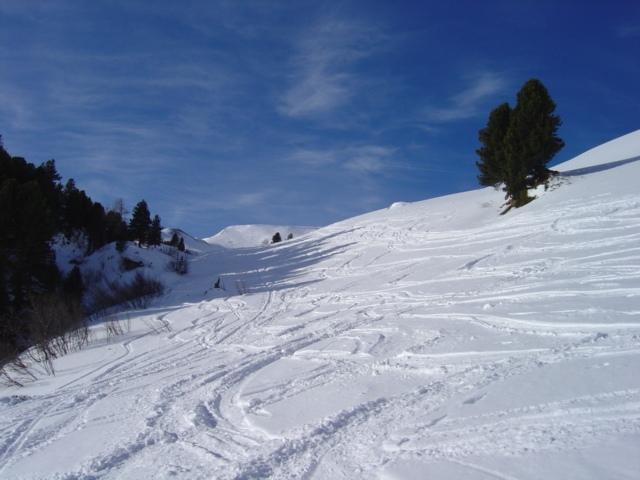 Foto: Manfred Karl / Ski Tour / Schöpfing (2143m) / Der Schöpfing taucht auf / 26.01.2009 21:04:59