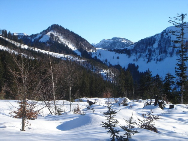 Foto: Manfred Karl / Ski Tour / Grobriedel (1473m) / Blick zum Trattberg / 27.01.2009 06:39:45