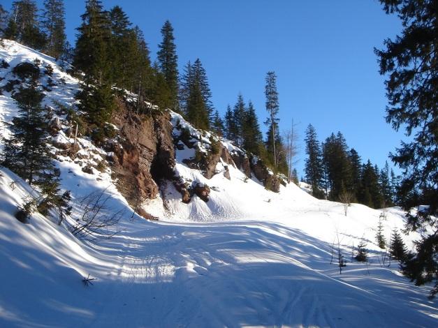 Foto: Manfred Karl / Ski Tour / Grobriedel (1473m) / Gleich nach dem Felsen beginnt der kurze Gipfelhang / 27.01.2009 06:39:08