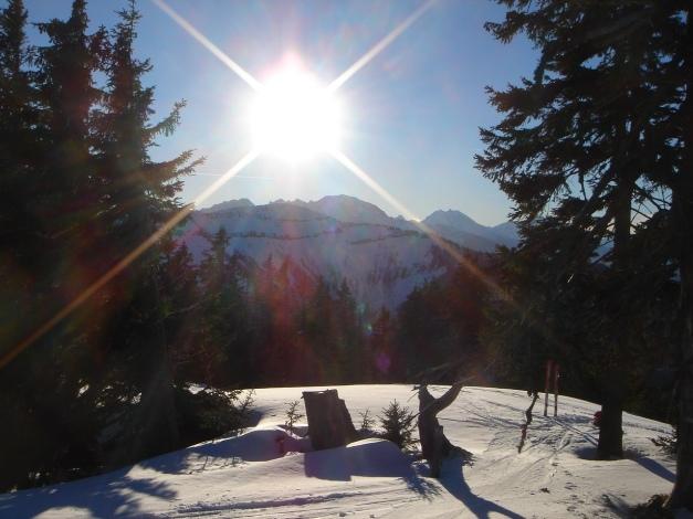 Foto: Manfred Karl / Ski Tour / Grobriedel (1473m) / 27.01.2009 06:35:47