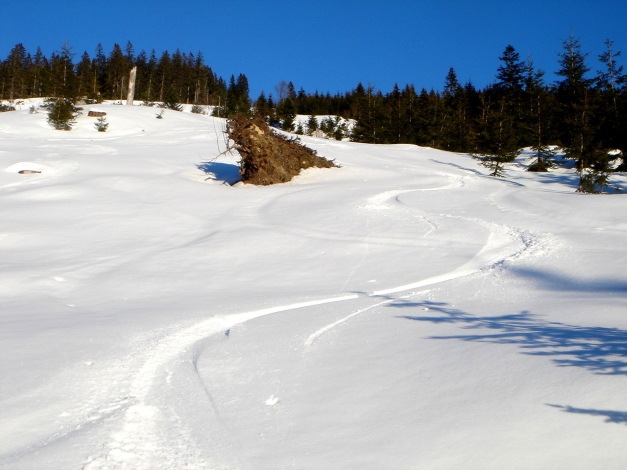 Foto: Manfred Karl / Ski Tour / Grobriedel (1473m) / 27.01.2009 06:35:33