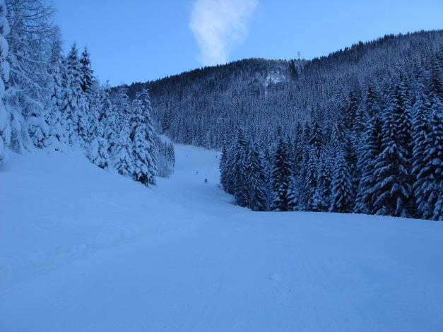 Foto: Manfred Karl / Ski Tour / Aus der Zaglau auf die Bischlinghöhe / Unterer Teil des Anstieges / 27.01.2009 07:06:57
