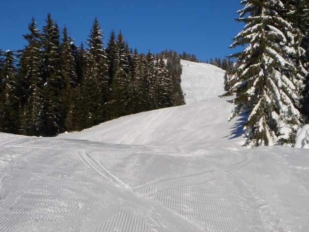 Foto: Manfred Karl / Ski Tour / Aus der Zaglau auf die Bischlinghöhe / Sonniger Aufstieg im oberen Teil / 27.01.2009 07:06:15