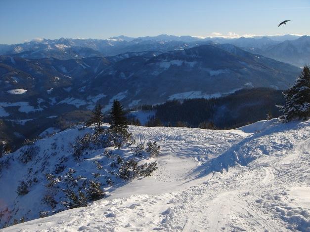 Foto: Manfred Karl / Ski Tour / Aus der Zaglau auf die Bischlinghöhe / Die letzten Meter zum Gipfel / 27.01.2009 07:05:21