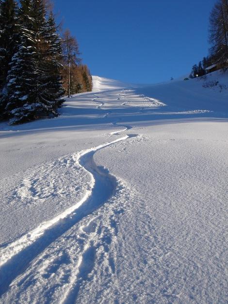 Foto: Manfred Karl / Ski Tour / Aus der Zaglau auf die Bischlinghöhe / Genussreiches Schwingen zur Strussingalm / 27.01.2009 07:04:08