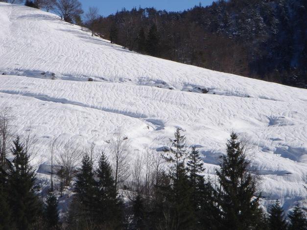 Foto: Manfred Karl / Ski Tour / Zwieselstaufen von Jochberg / 27.01.2009 07:40:53