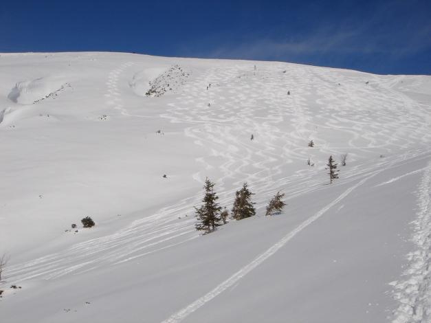Foto: Manfred Karl / Ski Tour / Zwieselstaufen von Jochberg / Zwiesel Gipfelhang / 27.01.2009 07:39:48