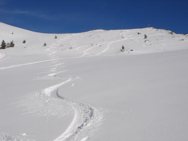 Foto: Manfred Karl / Ski Tour / Zwieselstaufen von Jochberg / Abfahrt vom Zenokopf / 27.01.2009 07:37:14