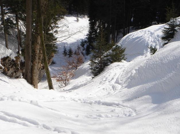 Foto: Manfred Karl / Ski Tour / Zwieselstaufen von Jochberg / Oberhalb der Engstelle / 27.01.2009 07:34:28