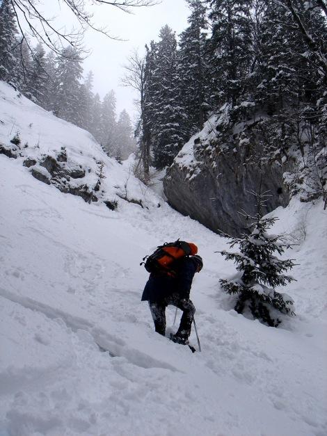 Foto: Manfred Karl / Ski Tour / Zwieselstaufen von Jochberg / Der schmale Durchschlupf bei der Abfahrtsvariante, bei wenig Schnee muss man hier die Schi u. U. abschnallen / 27.01.2009 07:27:26