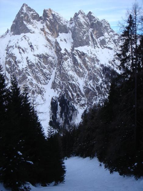 Foto: Manfred Karl / Ski Tour / Vorderberghörndl (2082m) / Die Waldschneise, im Hintergrund Mühlsturz- und Grundübelhörner / 27.01.2009 08:01:25