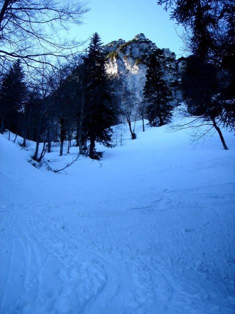 Foto: Manfred Karl / Ski Tour / Durch das Ostertal auf die Hörndlwand / Im lockeren Waldbereich unterhalb des Kares / 28.01.2009 22:23:07