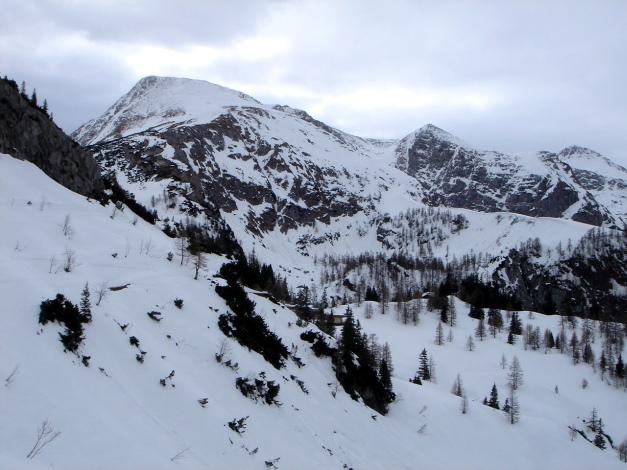 Foto: Manfred Karl / Ski Tour / Schneibstein, Bockskehl Abfahrt / Schneibstein - Reinersberg / 28.01.2009 22:57:01