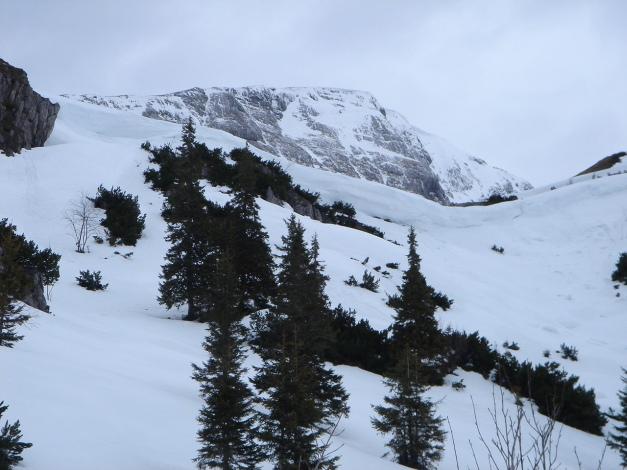 Foto: Manfred Karl / Ski Tour / Schneibstein, Bockskehl Abfahrt / Querung zum Stahlhaus / 28.01.2009 22:56:30
