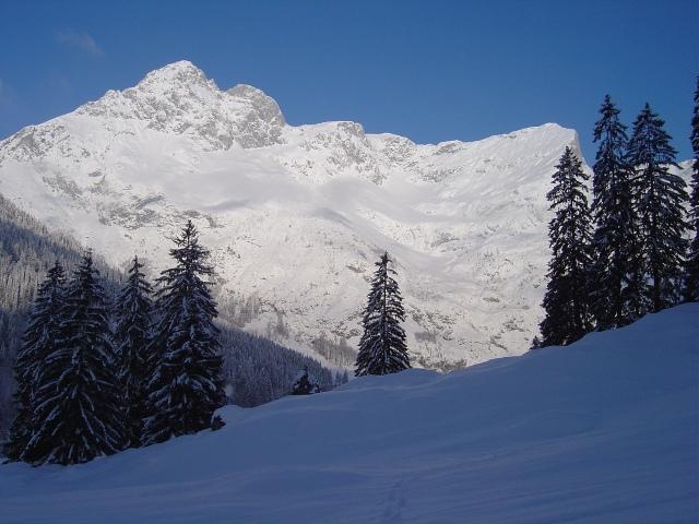 Foto: Manfred Karl / Ski Tour / Schartwand, 2339 m und Brietkogel, 2316 m / Wenger Panorama (Hochthron - Trog - Wermutschneid) / 29.01.2009 19:16:24