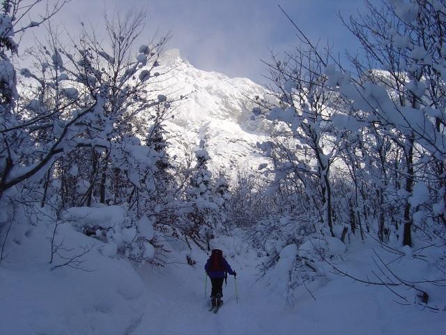 Foto: Manfred Karl / Ski Tour / Schartwand, 2339 m und Brietkogel, 2316 m / Staudenreich ist der unterste Teil des Anstieges zur Hackel Hütte / 29.01.2009 19:15:43