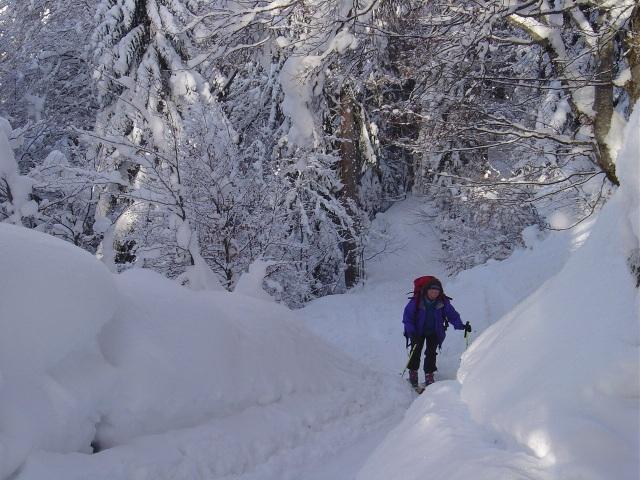 Foto: Manfred Karl / Ski Tour / Schartwand, 2339 m und Brietkogel, 2316 m / So gehört sich ein Winter! / 29.01.2009 19:14:53