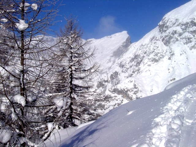 Foto: Manfred Karl / Ski Tour / Schartwand, 2339 m und Brietkogel, 2316 m / Wermutschneid / 29.01.2009 19:14:20