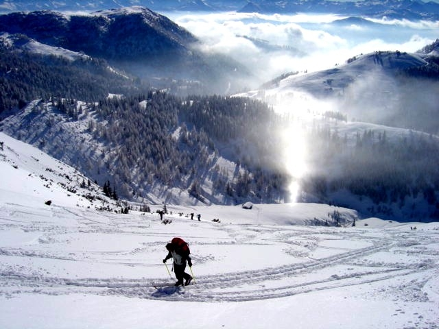 Foto: Manfred Karl / Ski Tour / Schartwand, 2339 m und Brietkogel, 2316 m / Was ist denn das? / 29.01.2009 19:12:54