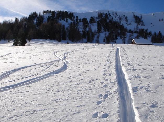 Foto: Manfred Karl / Ski Tour / Über die Steffeialm auf den Wirtsnock / Hinter der Hütte nach links auf den Kamm und über diesen zum Gipfel / 29.01.2009 19:53:24
