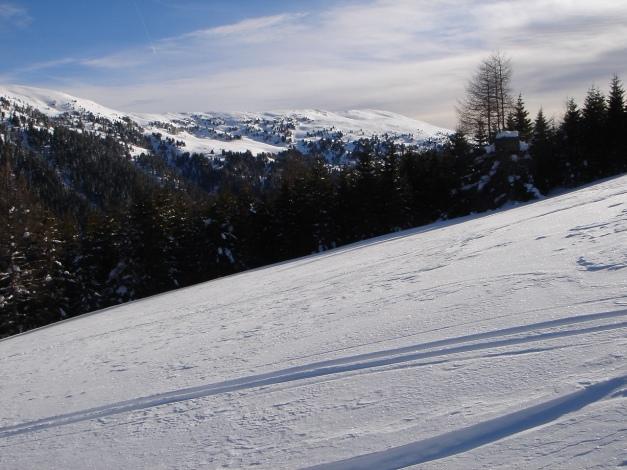 Foto: Manfred Karl / Ski Tour / Über die Steffeialm auf den Wirtsnock / Klölingnock (siehe Alpintouren.at) / 29.01.2009 19:51:43