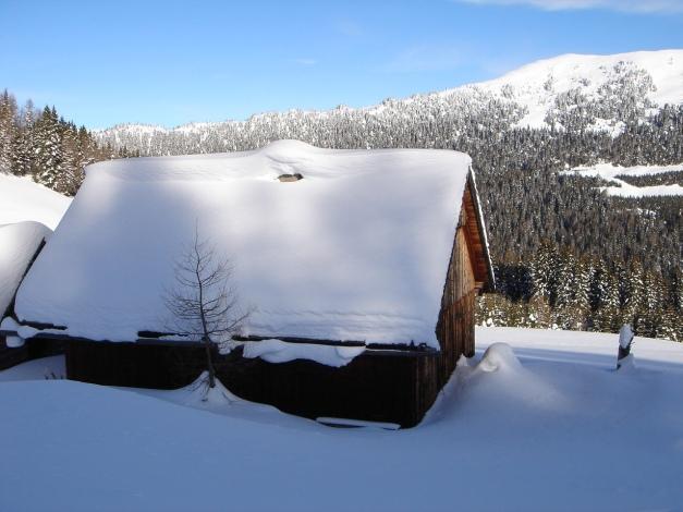 Foto: Manfred Karl / Ski Tour / Über die Steffeialm auf den Wirtsnock / 29.01.2009 19:51:13