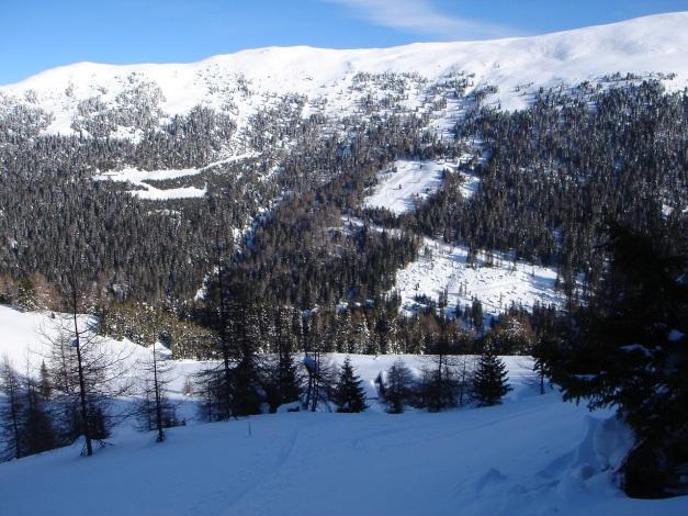 Foto: Manfred Karl / Ski Tour / Über die Steffeialm auf den Wirtsnock / Oberhalb der Steffeialm / 29.01.2009 19:50:50