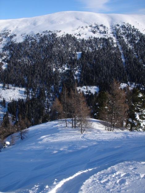 Foto: Manfred Karl / Ski Tour / Über die Steffeialm auf den Wirtsnock / Mühlhauser Höhe (siehe Alpintouren.at) / 29.01.2009 19:49:40