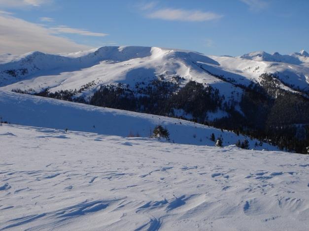 Foto: Manfred Karl / Ski Tour / Über die Steffeialm auf den Wirtsnock / Schwarzwand, die einige Abfahrtsmöglichkeiten bietet (siehe Alpintouen.at) / 29.01.2009 19:48:18