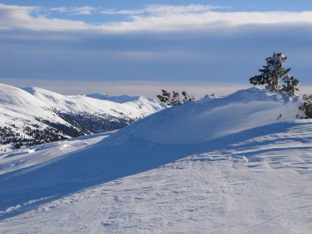 Foto: Manfred Karl / Ski Tour / Über die Steffeialm auf den Wirtsnock / Punkt 2060 / 29.01.2009 19:46:25