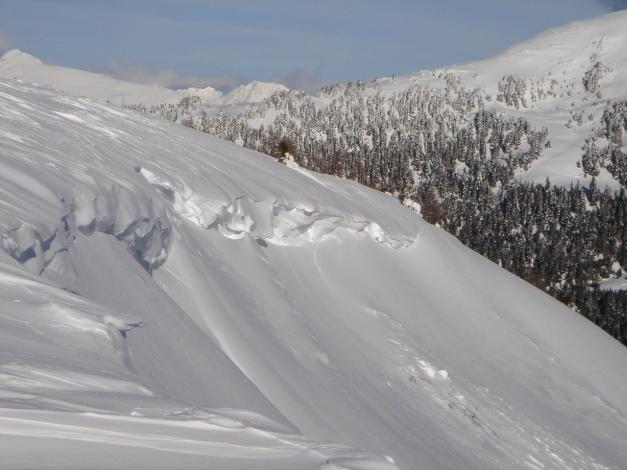 Foto: Manfred Karl / Ski Tour / Über die Steffeialm auf den Wirtsnock / Auch kleine Mugel haben ihre Wechten / 29.01.2009 19:41:47