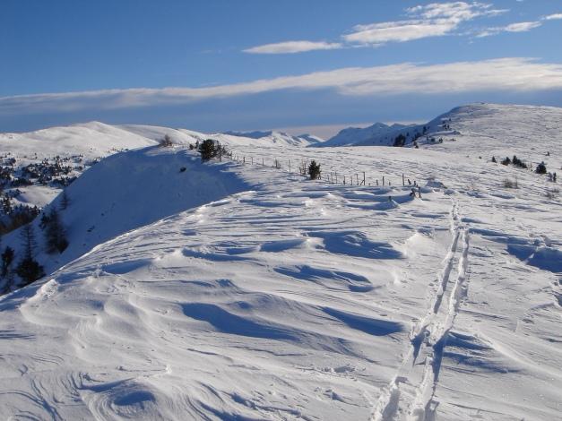 Foto: Manfred Karl / Ski Tour / Über die Steffeialm auf den Wirtsnock / Der unscheinbare Wirtsnockgipfel und rechts davon der Punkt 2060 / 29.01.2009 19:41:14