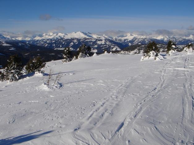 Foto: Manfred Karl / Ski Tour / Über die Steffeialm auf den Wirtsnock / Blick vom Wirtsnock nach Norden / 29.01.2009 19:40:02